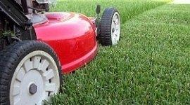 riparazione taglia erba, assistenza macchine da giardinaggio, manutenzione macchine da giardinaggio