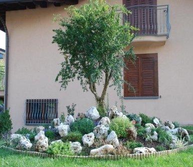 giardini privati, alberelli, composizioni floreali