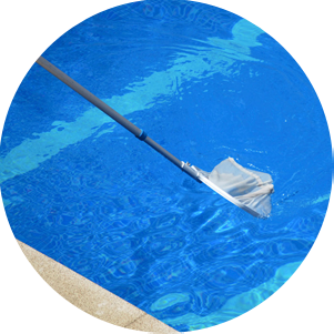 Someone using a net on an extended pole to clean the surface of a swimming pool