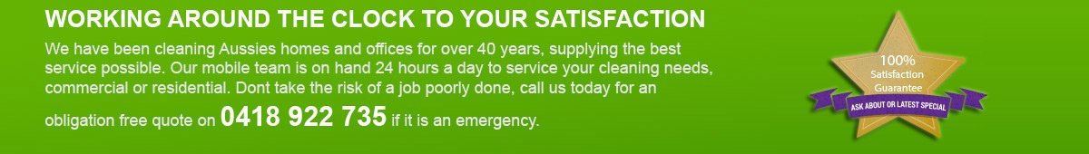melita cleaning service green tab