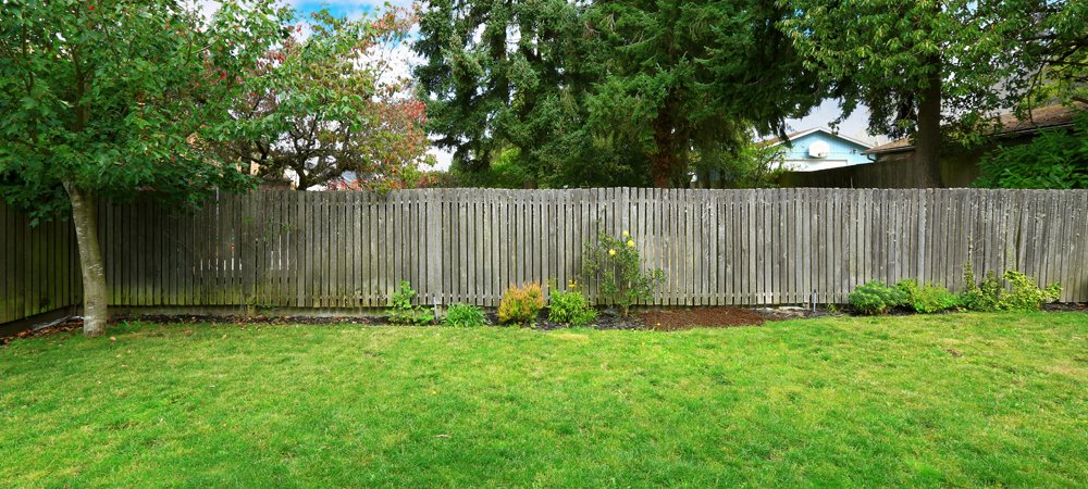 A tall, grey wooden fence at the bottom of a garden