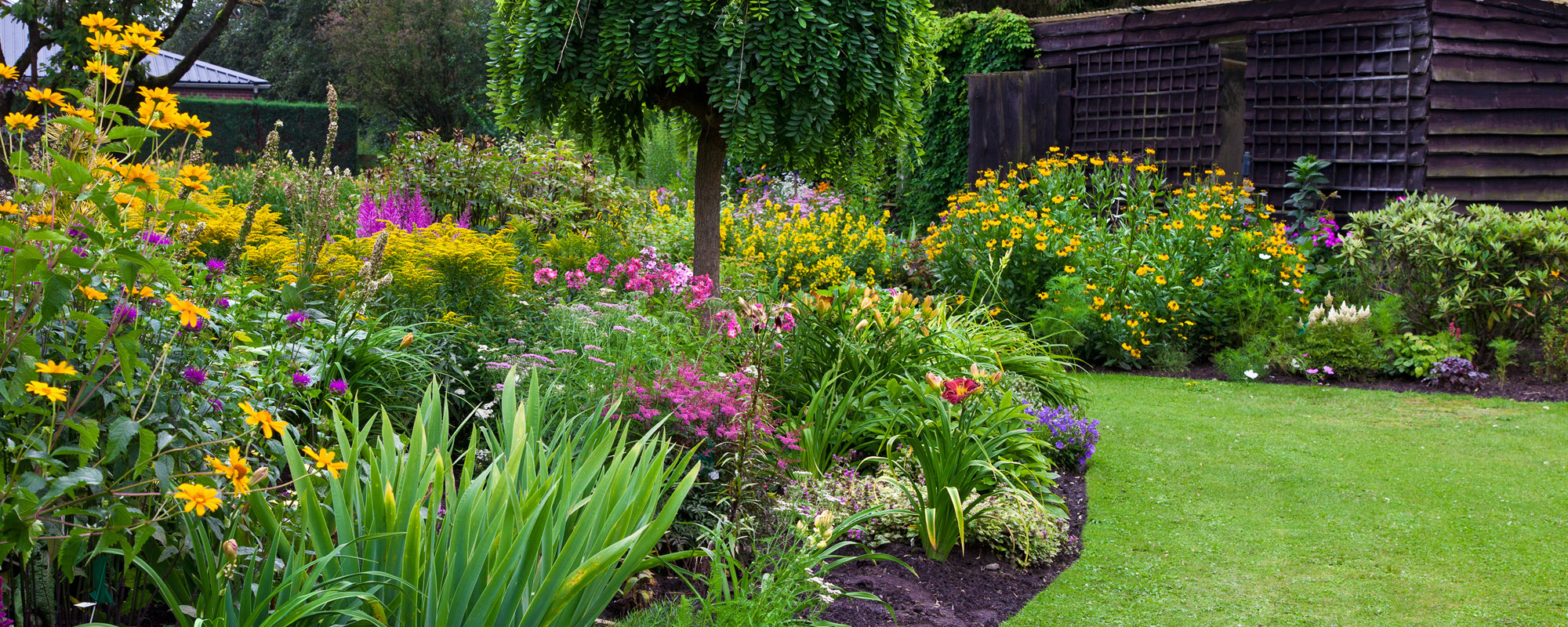 Landscape gardening by professionals