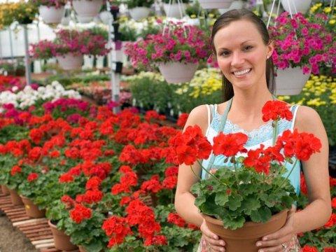 Vendita fiori Varese