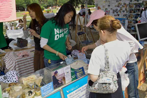 Information booth at 2009 Chubu Walkathon