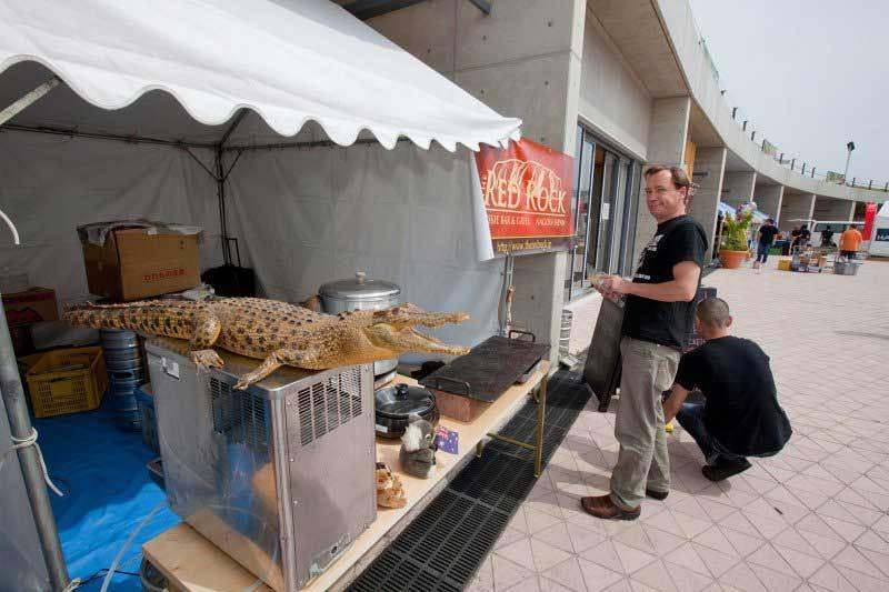 Crocodile and Food Vendor