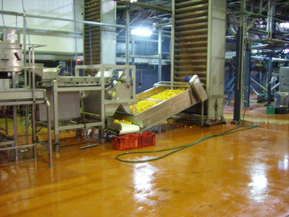 interno di una fabbrica con un carrello in ferro con dentro dei limoni