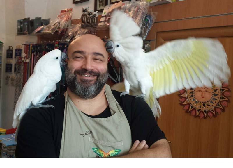 uomo con due pappagalli sulle spalle
