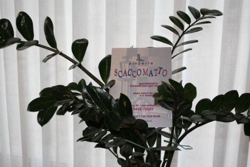 pianta con volantino del locale