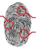 verifica impronte digitali, rilievo impronte digitali
