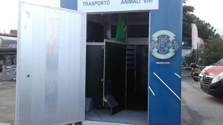 allestimenti mezzi trasporto animali