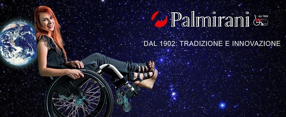 carrozzine disabili Palmirani