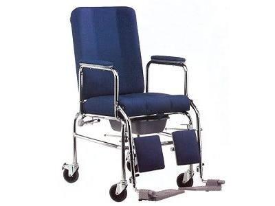 Carrozzine per disabili bologna palmirani