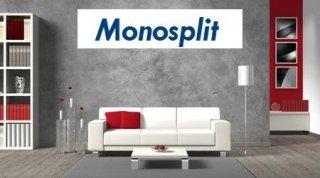 monosplit
