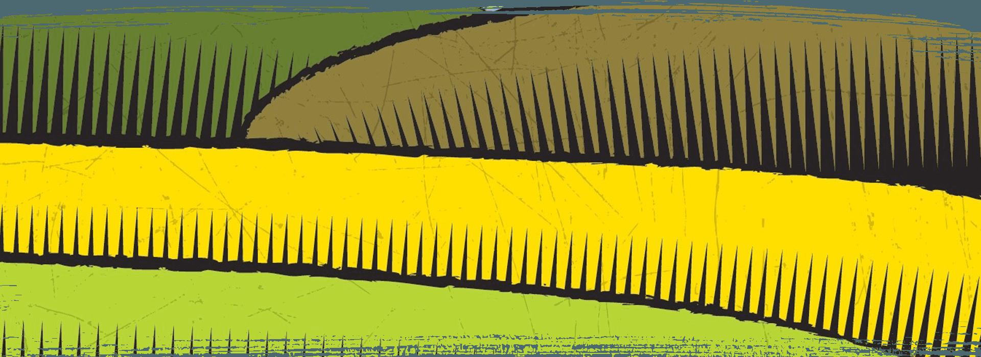 Yellow decorative patterns