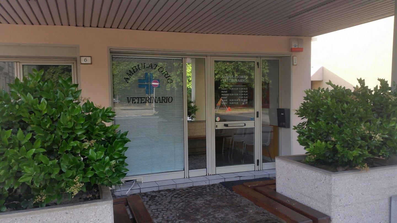 vista esterna di una clinica veterinaria
