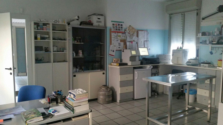 ambulatorio clinica veterinaria