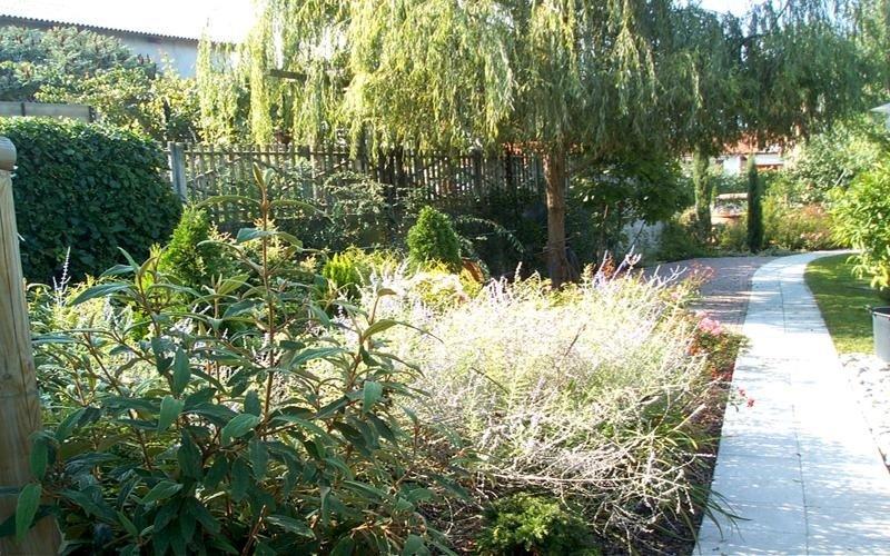 impresa giardinaggio mondovi