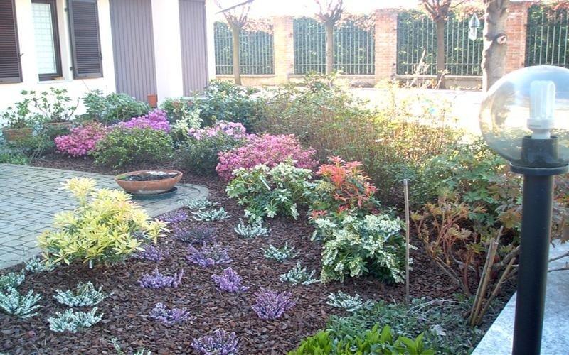 piante per giardini cuneo