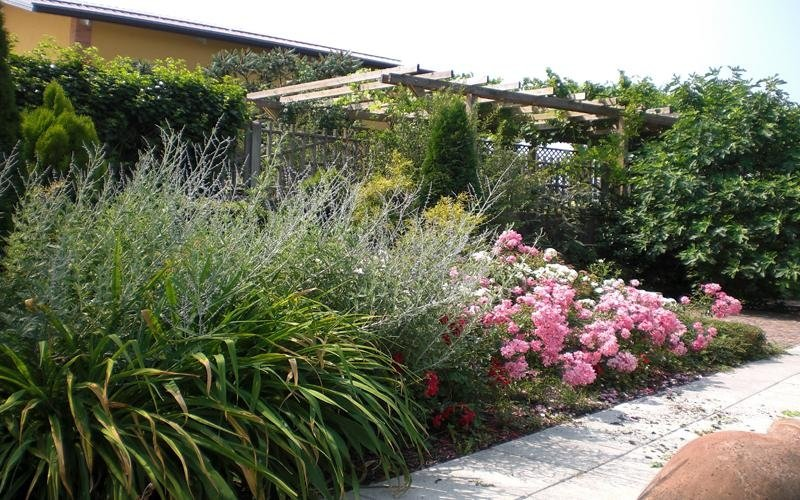 progettazione giardini cuneo