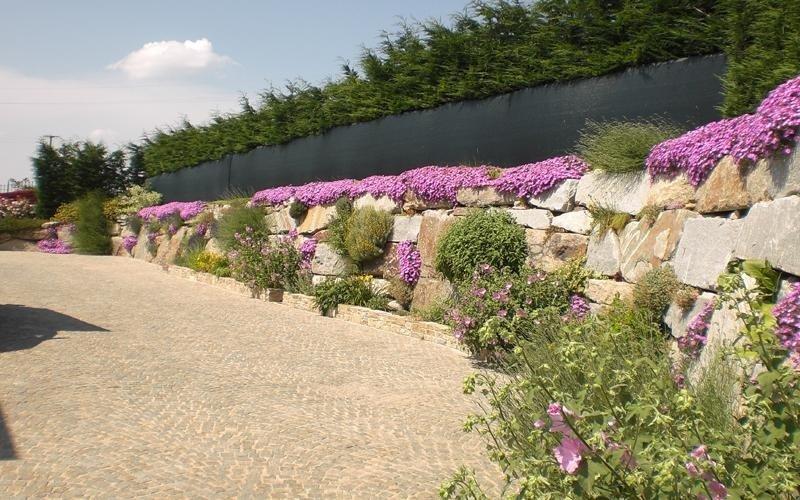 azienda piante ornamentali cuneo