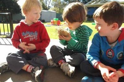 Cowarra Park Preschool Kanga2