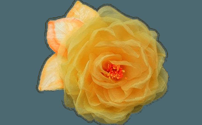 Rosa organza e velluto MIRIAM cm15