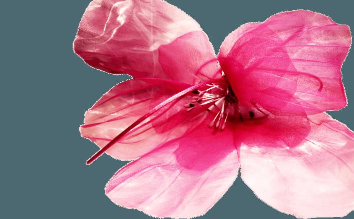 Fiore in organza FARFALLA cm15
