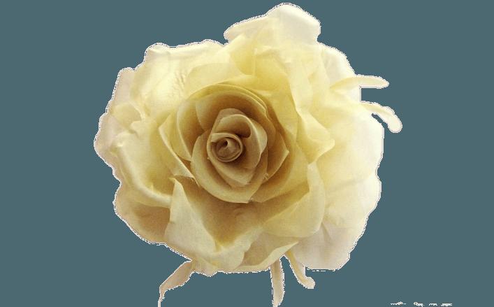 Rosa in organza di seta REGINA cm14