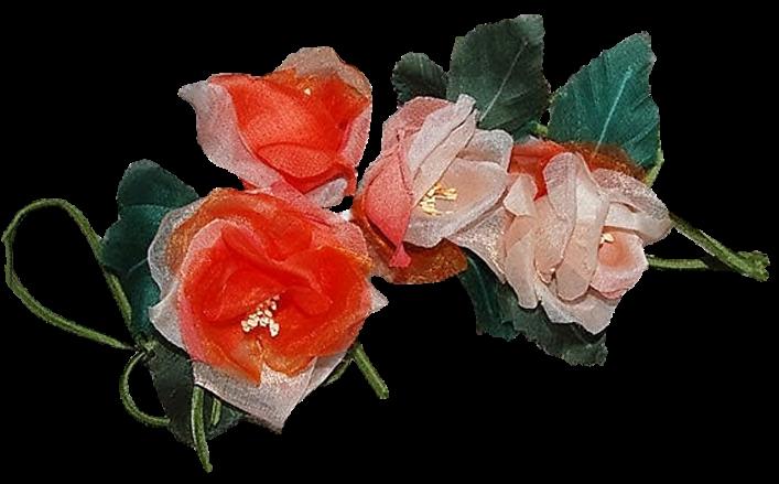 Tralcio di boccioli in orgnaza ANJA cm12