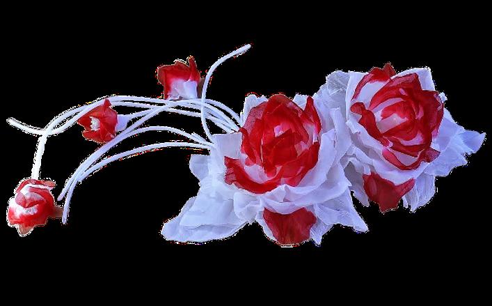 Tralcio di rose in seta sfumata ISBEL cm35