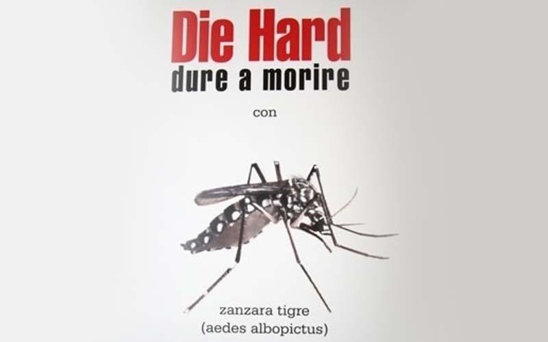 Die Hard Zanzara tigre