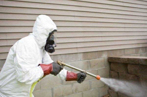 Disinfestazioni disinfezioni caserta