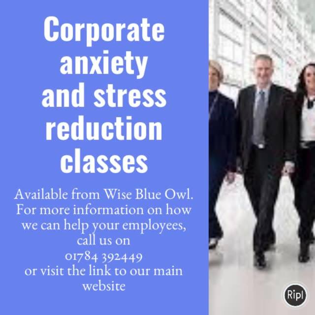 employer system programs from wise blue owl therapy centre