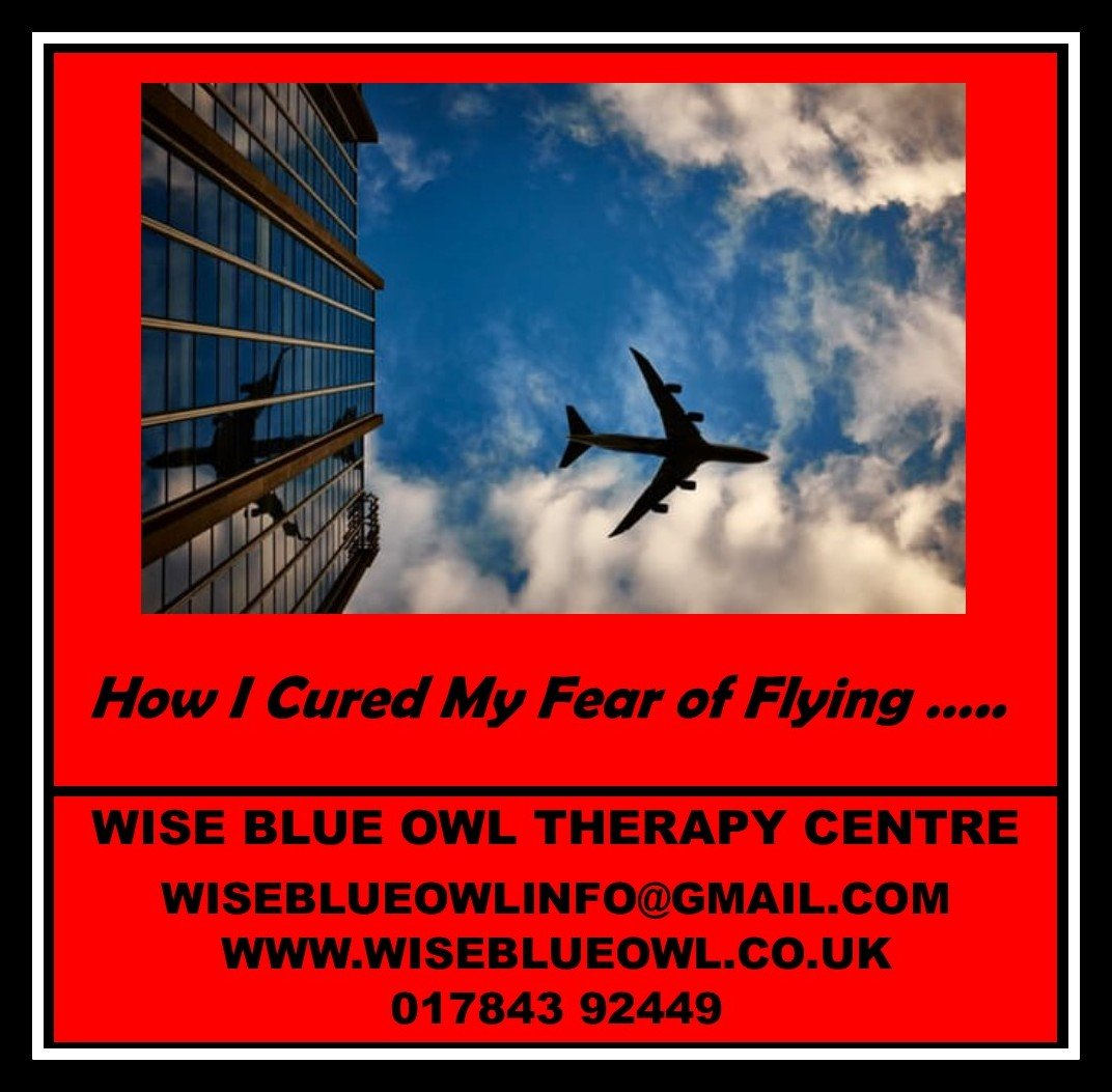 fear of flying poster
