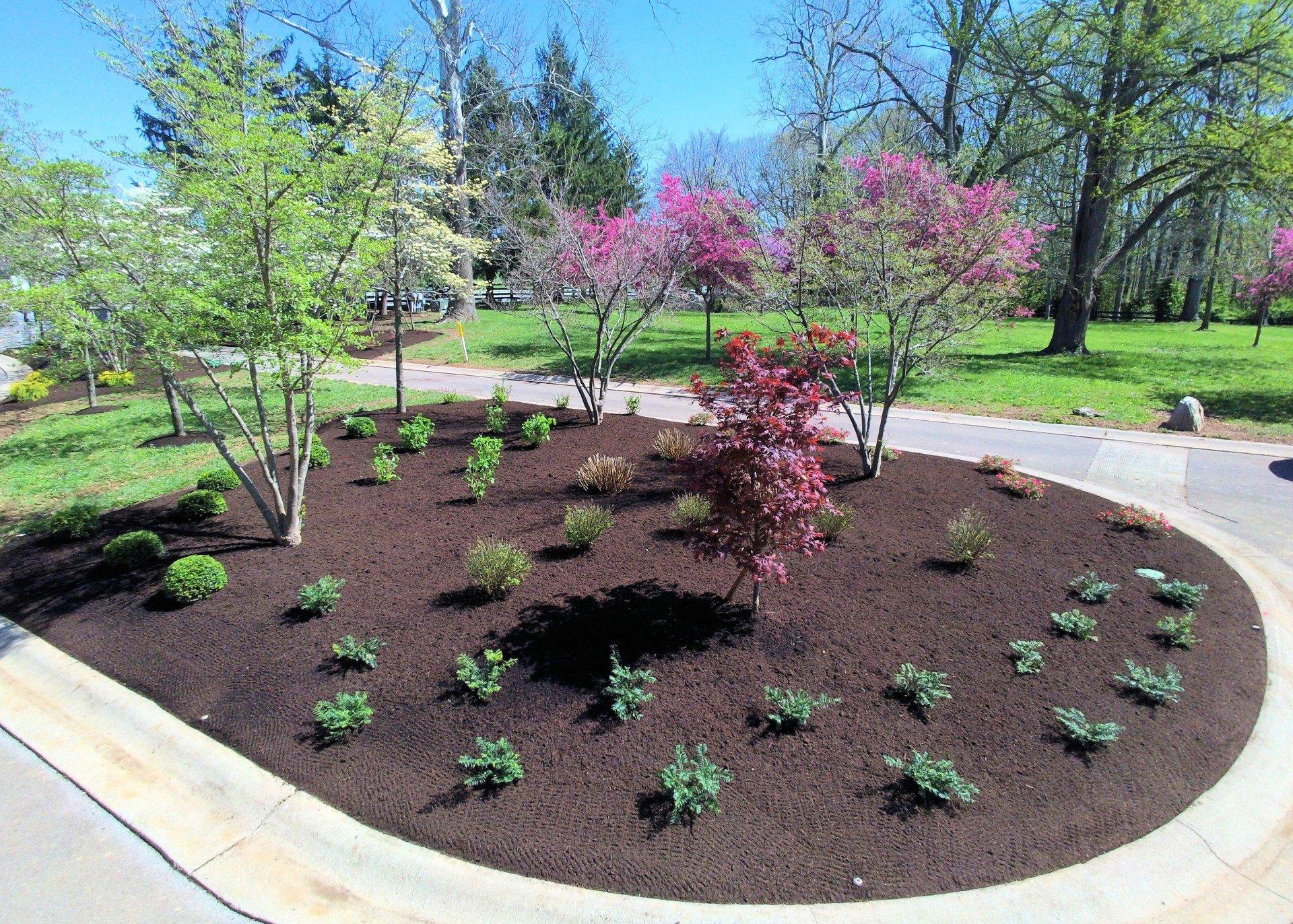 Landscaping Lexington Ky
