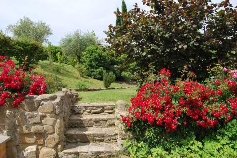 Vista di un giardino a Ostra Vetere