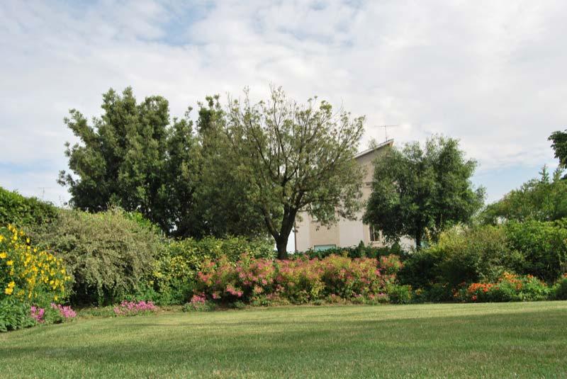 Giardino di una casa a Ostra Vetere