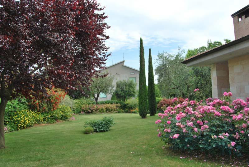 Giardino con i cipressi e piante dei fiori a Ostra Vetere