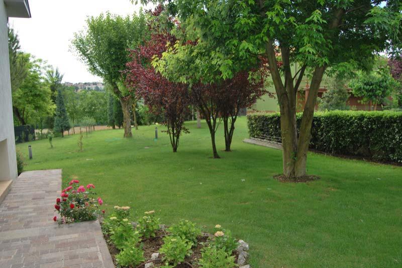 Alberi e piante nel giardino a Ostra Vetere