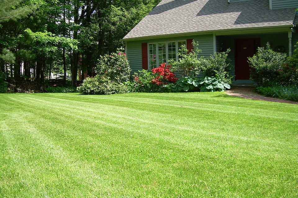 Residential lawn care and maintenance from Cook Bros PA