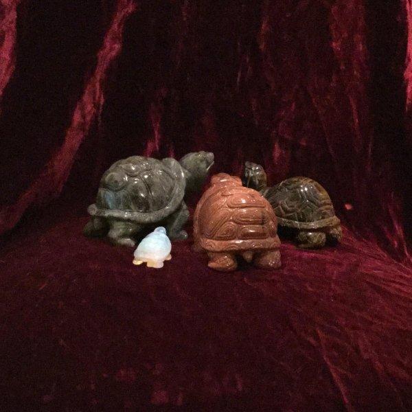 Tartarughe in diverse pietre dure
