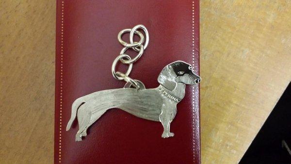 ciondolo in argento con catena