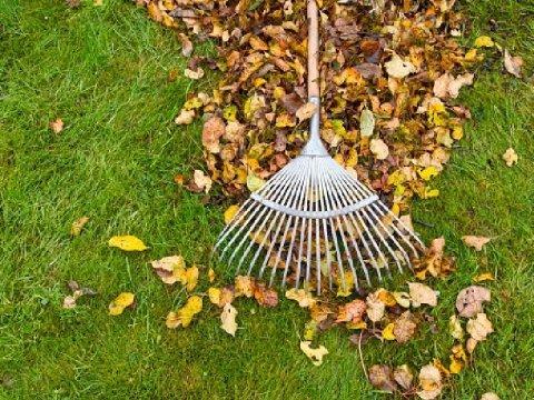 manutenzione giardini Puliartex