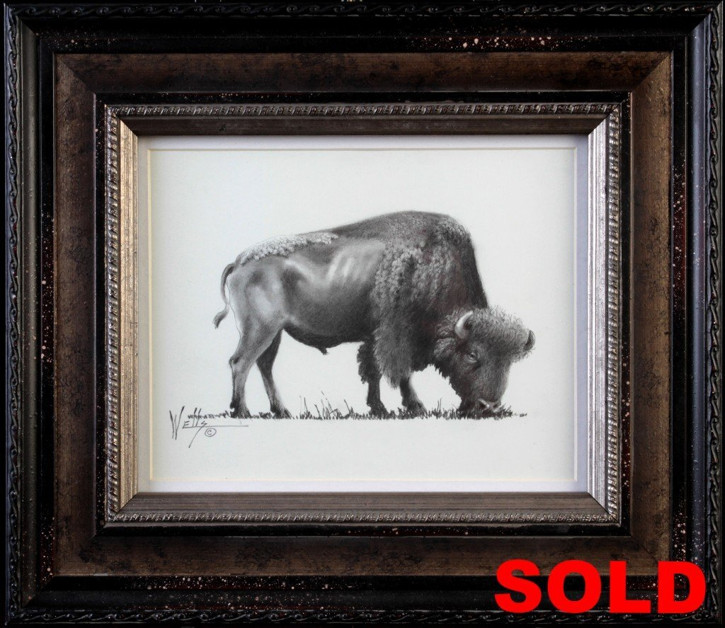 """""""Bison Study"""" Framed 15x13 Unframed 8x10"""