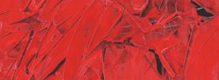 Ruggeri P. - Rosso Vermiglio - olio su tela -  cm 60-80 - 2006
