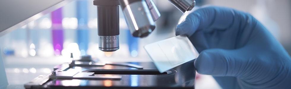 Laboratorio Analisi Mediche Tossicologiche L.a.m. Sarzana (SP)