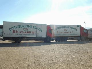 camion di cataldo