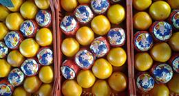 vendita frutta, arance,arance rosse