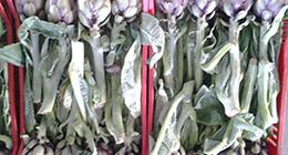 ingrosso verdura, cariciofi
