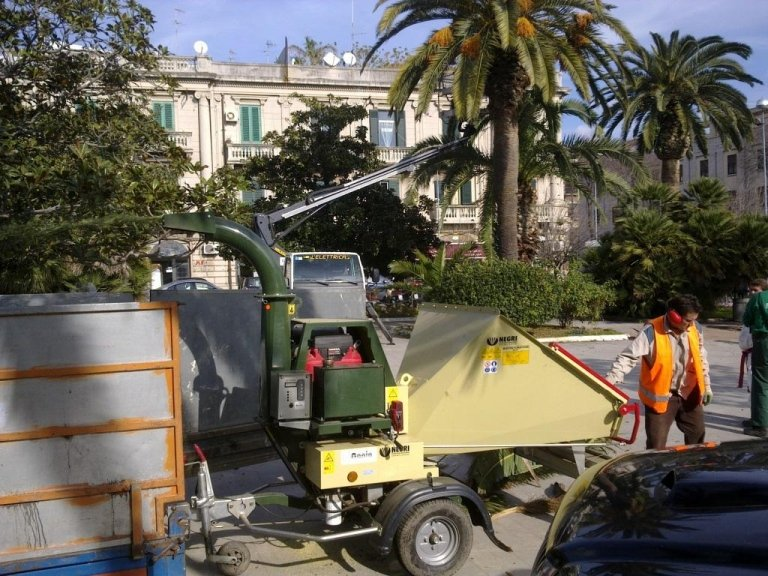 Pruning and monitoring against the Red Palm Weevil in Piazza Municipio in Messina with shredder